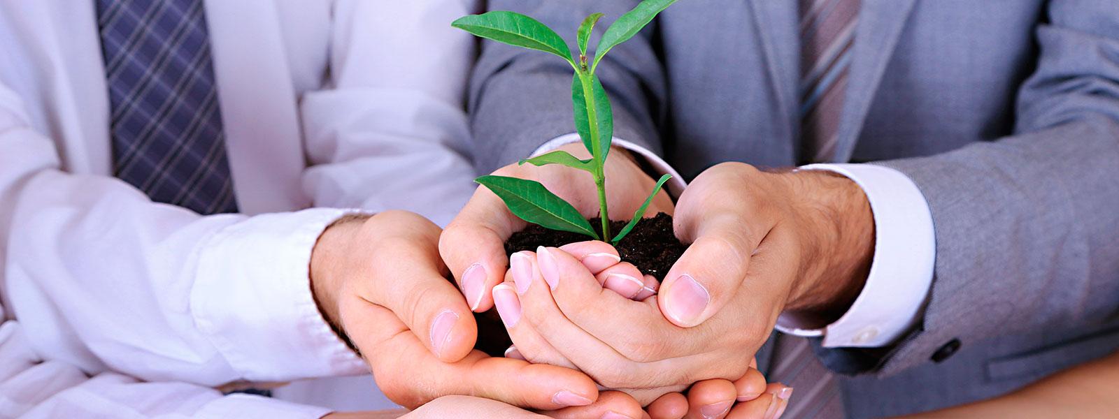 endutex-sustentabilidade